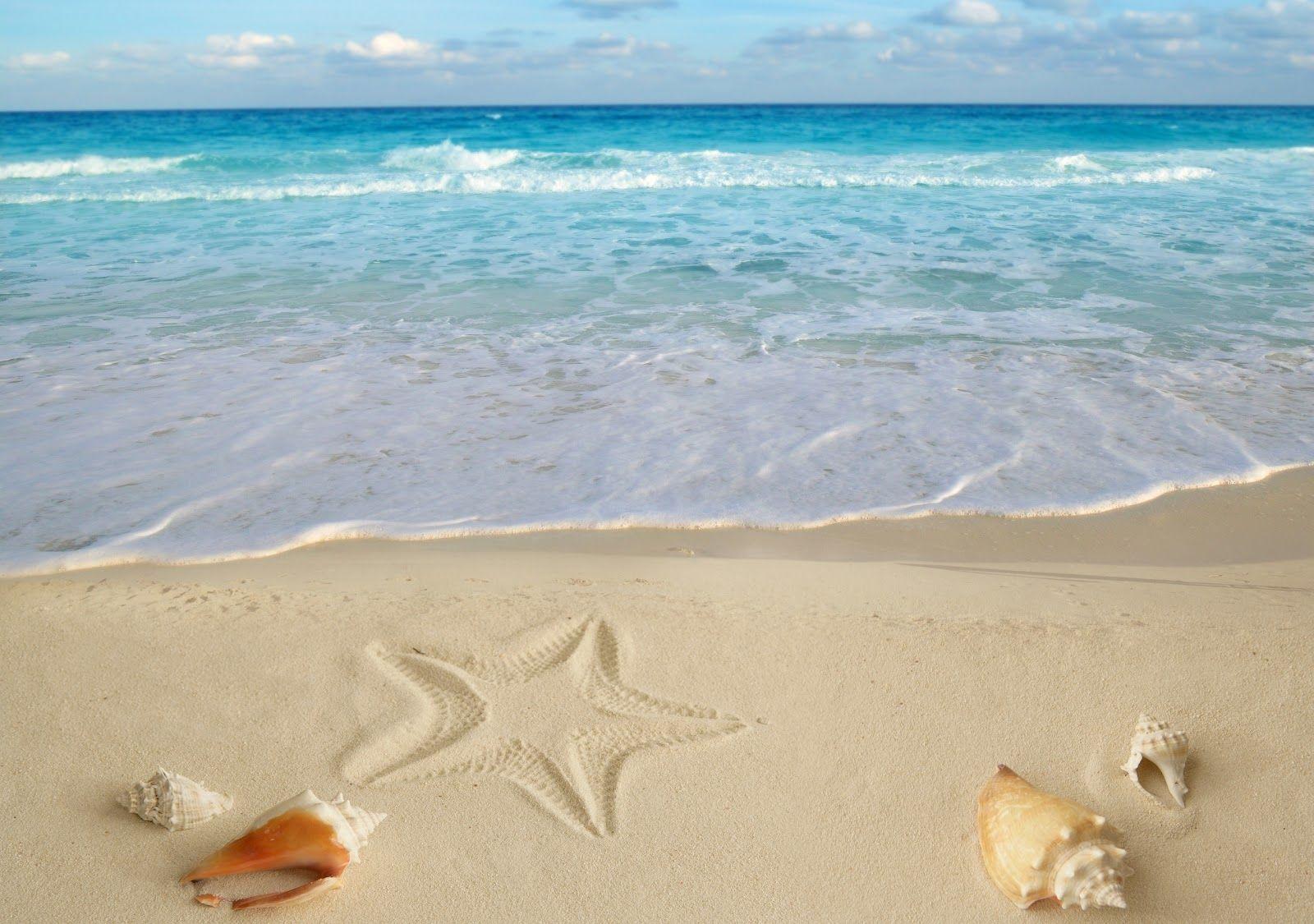 Mơ thấy biển có ý nghĩa gì? Điềm may hay rủi?