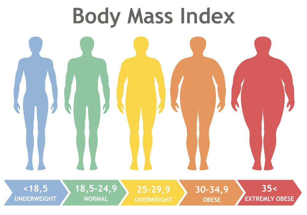 Chỉ số BMI giúp nhận định mức độ gầy béo