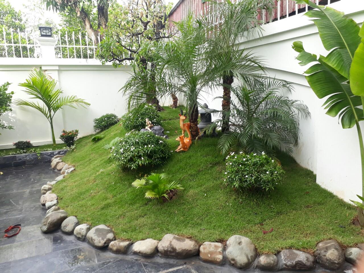 Mẫu tiểu cảnh sân vườn đẹp được yêu thích nhất hiện nay | Thiết kế thi công  nội thất nhà hàng